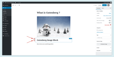 Move Block in Gutenberg