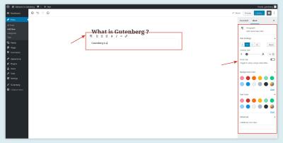 Gutenberg Text Editor Options