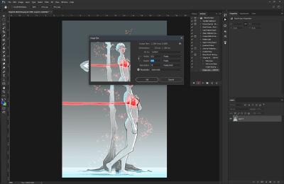 Image size values changed